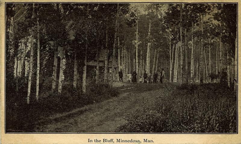 Postcard 634 In The Bluff Minnedosa Man 1909